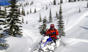 Powder sled