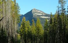 View of Mountains surrounding Elkins Resort